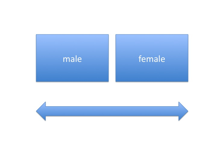 identifying gender on the basis of other things other than biological sex On a view like this, it's hard to make sense of a mismatch between a person's gender identity and their assigned sex, if it's the biological basis for their assigned sex that's taken to reflect.